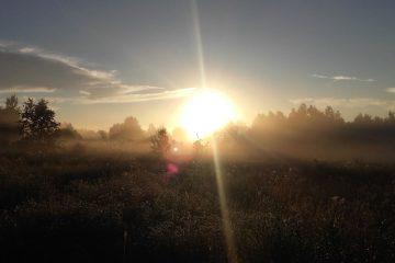 Saule leidziasi Krunu kaime